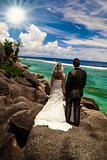 Bride and groom looking out over the ocean
