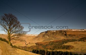 21 - Lone tree at Dovestone reservoir in Peak District