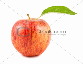 Red apple with green leaf