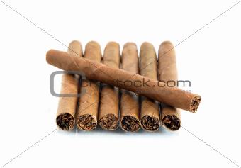 Cigars On White