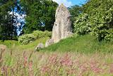 berkhamsted castle ruins hertfordshire uk