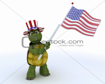 tortoise with american flag