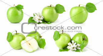 green apples on white background set