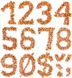 Hazelnut Numbers