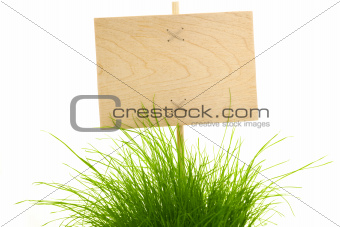Empty wooden Sign with green Grass / isolated on white