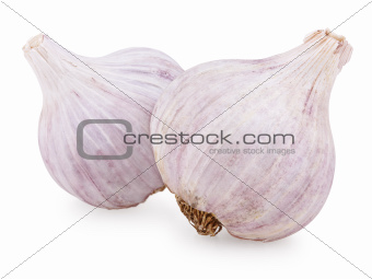 Two purple garlic