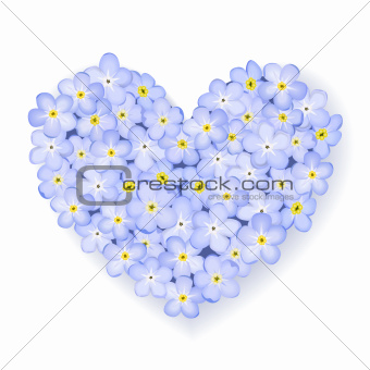 Forget-me-not flower heart isolated on white background