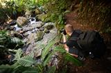 Photographing a Stream