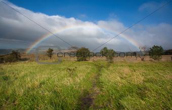 Rainbow Over Meadow