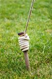 Close Up of Tent Stake Wrapped With Rope