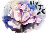 Beautiful flower in watercolor