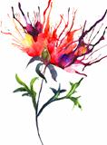 Abstract illustration of Peony flowers