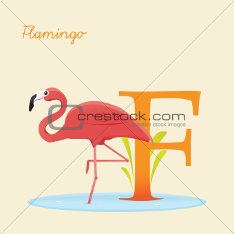 Animal alphabet with flamingo