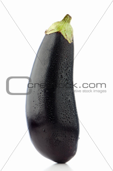 Big eggplant closeup