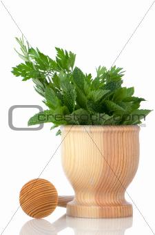 Green herb leafs