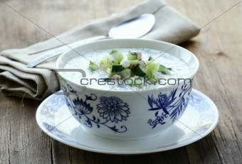 cold vegetable soup, traditional Russian cuisine