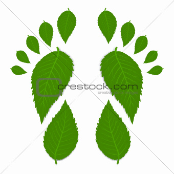 Leaves Footprint