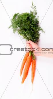 Holding carrots