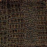 Old crocodile leather