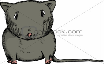 Black Gerbil