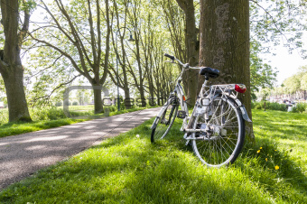 Bicycle in the park