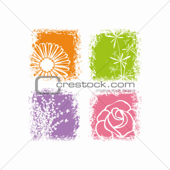 Abstract colorful flower on white background