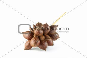 Salacca wallichiana
