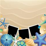 Pictures, shells and starfish on sand background.