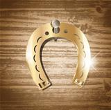 horseshoe over wooden background