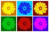 color dandelion