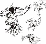 Predatory Bird Tattoos