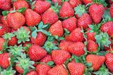 Fresh Strawberry closeup.