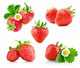 set strawberry berry with green leaf and flower