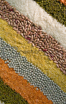 colorful striped rows of dry grains