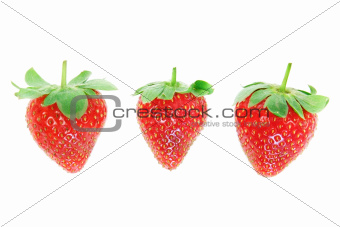 Three fresh strawberries closeup.