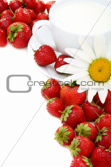 Ripe strawberries, cup of cream and chamomile.