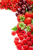Mix of summer berries.