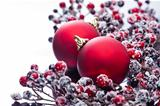 Two Christmas baubles and holly berries