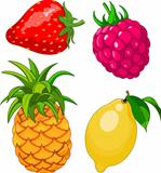 Cartoon fruit set