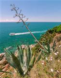 Costa Brava, Coastal image
