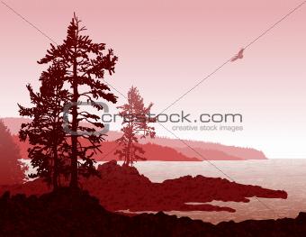 Vancouver Island BC West Coast Landscape