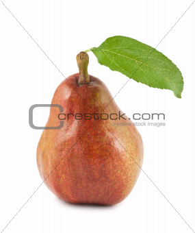 Red ripe pear