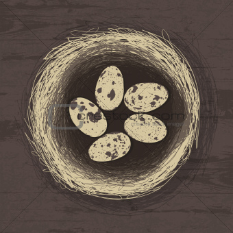Eggs in nest on wooden texture. Vector illustration, EPS 10