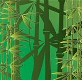 vector bamboo forest
