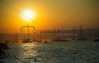 sailing boats on sea at sunset