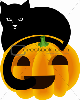 Black Cat Peeking Over the Top of a Halloween Pumpkin