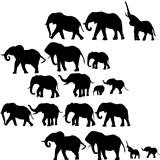 Background with elephants silhouettes