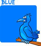 Color Blue and Bird Cartoon