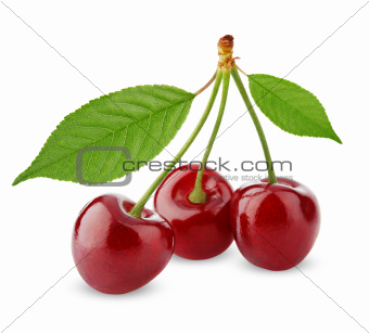 Three sweet cherries with leaves isolated on white