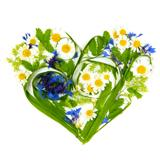 Heart Made of Flowers and Grass